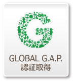 GLOBAL G.A.P.認証取得