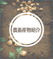 農畜産物紹介